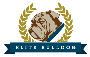 Elite Bulldog